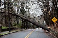Scarsdale Storm 03.13.10